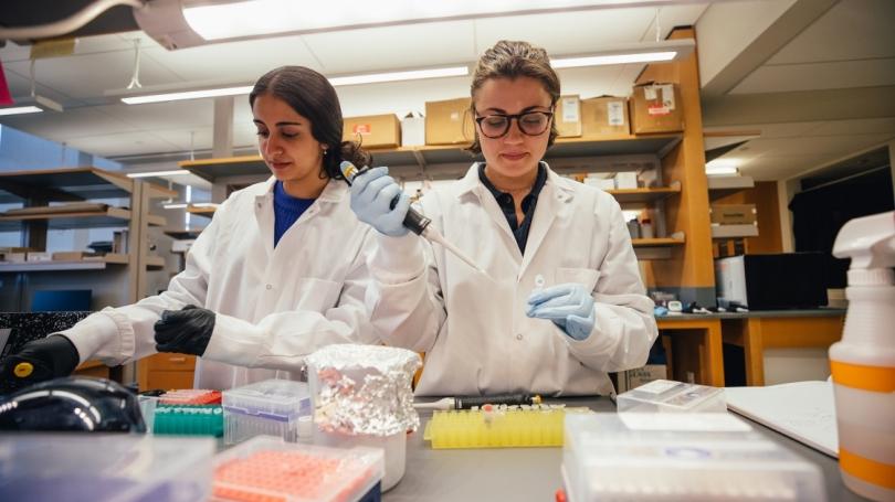 undergraduate researchers in Prof. Robert Hill's lab.
